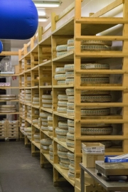 Pavillon des produits laitiers, meule de Comté