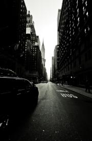 NY (1)