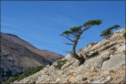 CHILE-Parque-national-Torres_Del_Paine