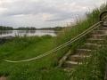 La Loire près de Combleux - 2014 - Gislaine Devillard